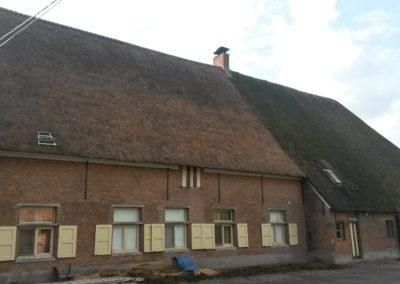 Renovatie rieten dak Hoeve Verhaert